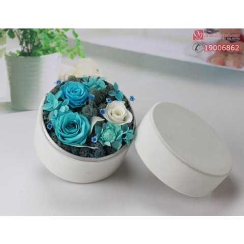 HHBT-giftset 3 bông hộp tròn (1)