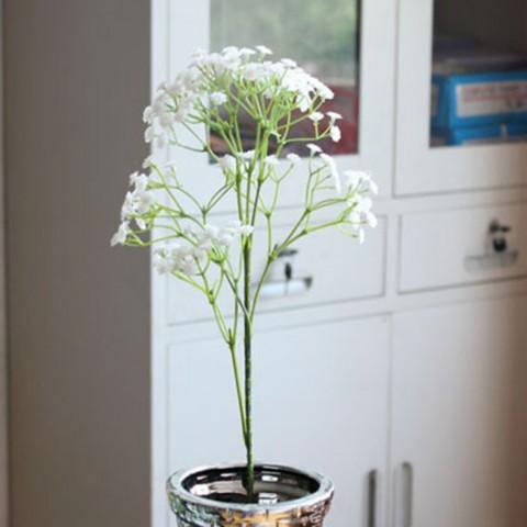 Cành hoa baby nhựa