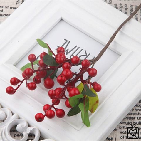 Cành quả cherry