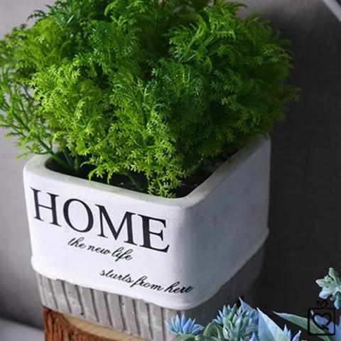 Chậu cây trang trí Home phong cách minimalism để bàn