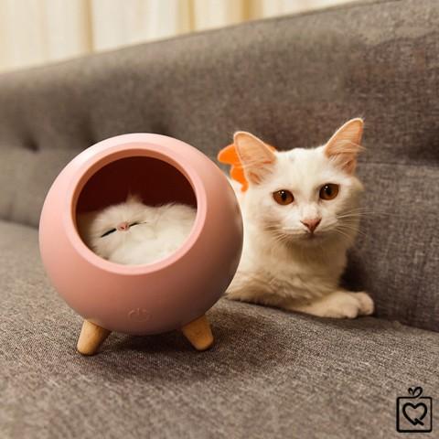 Đèn ngủ tổ ấm của mèo con - pin sạc