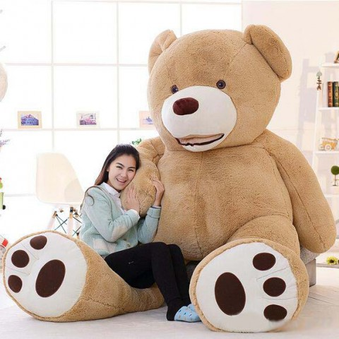 gau-bong-2m6-khong-lo-teddy-costco
