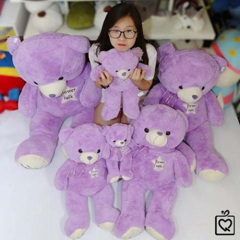 Gấu bông Teddy Lavender