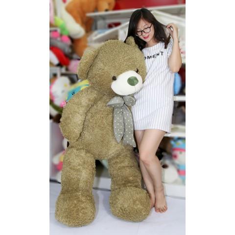 Gấu Teddy lông xù xanh-1m45