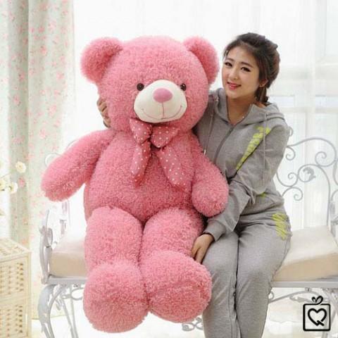 gau-teddy-long-xu-7