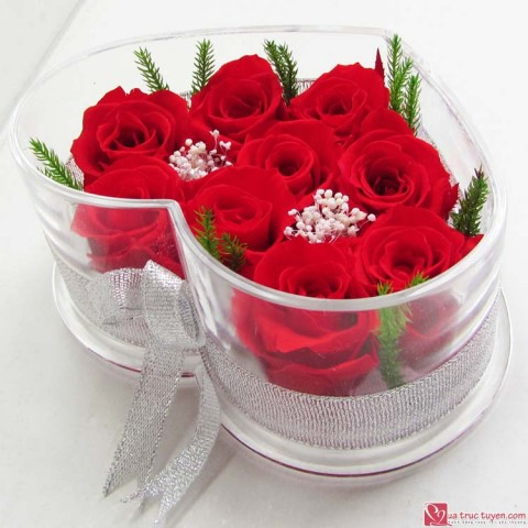 Hoa hồng bất tử - Hộp tim 9 bông hồng