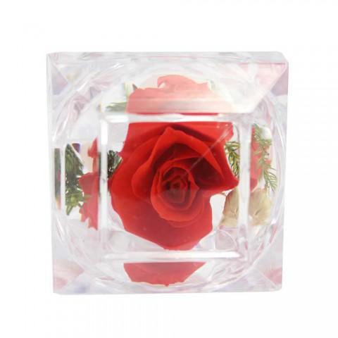 Hoa hồng bất tử - Hộp nhẫn