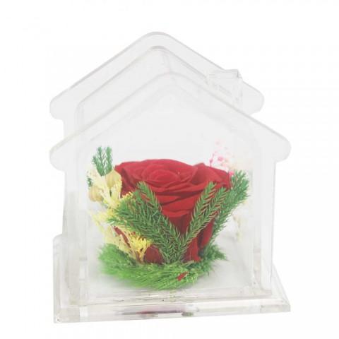Hoa hồng bất tử - Ngôi nhà hạnh phúc