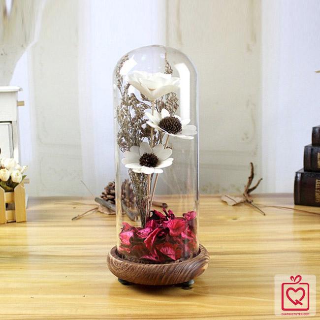 Bình hoa khô thủy tinh