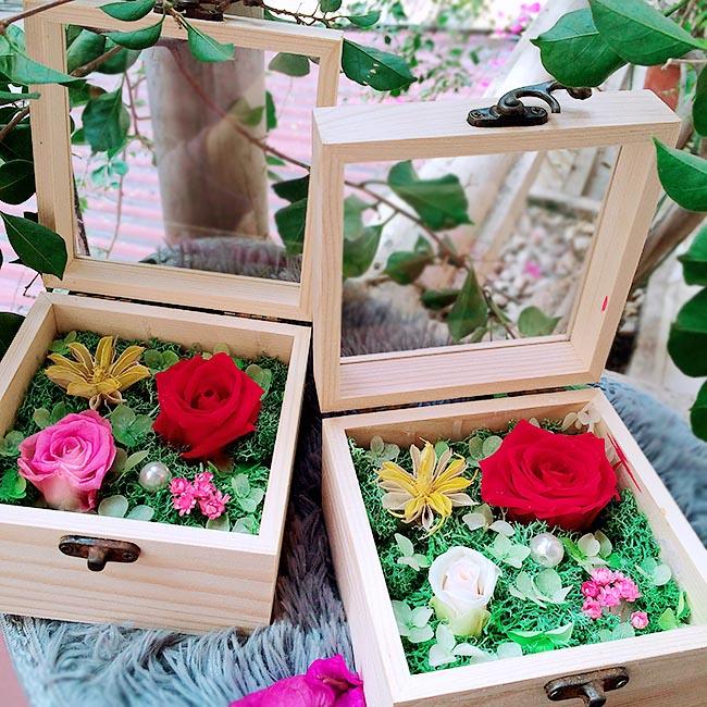 Hoa hồng bất tử