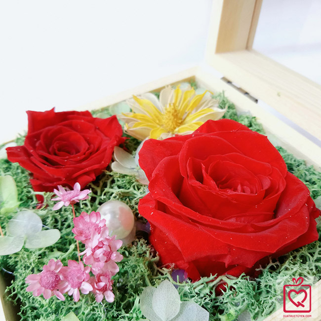 hoa hồng bất tử hộp gỗ trái tim hồng đỏ