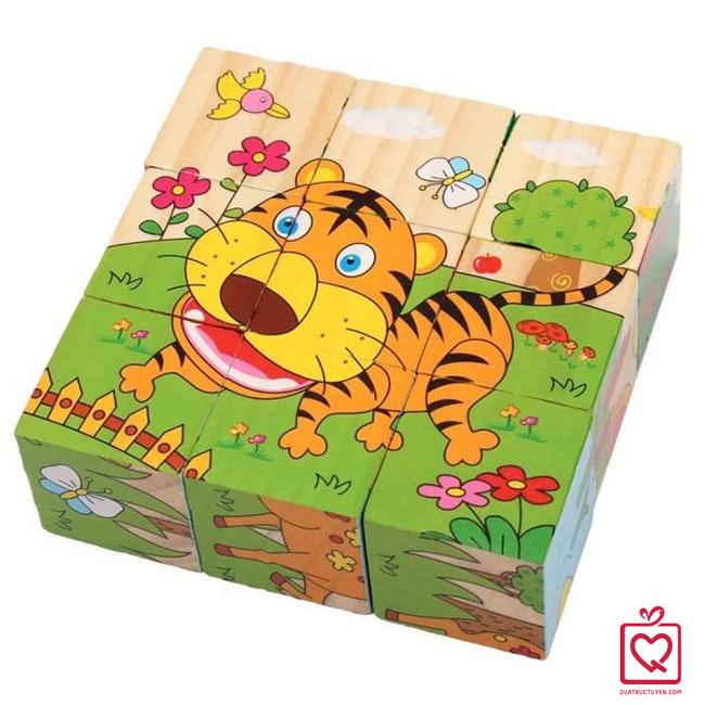 Đồ chơi gỗ ghép hình 9 khối 6 mặt