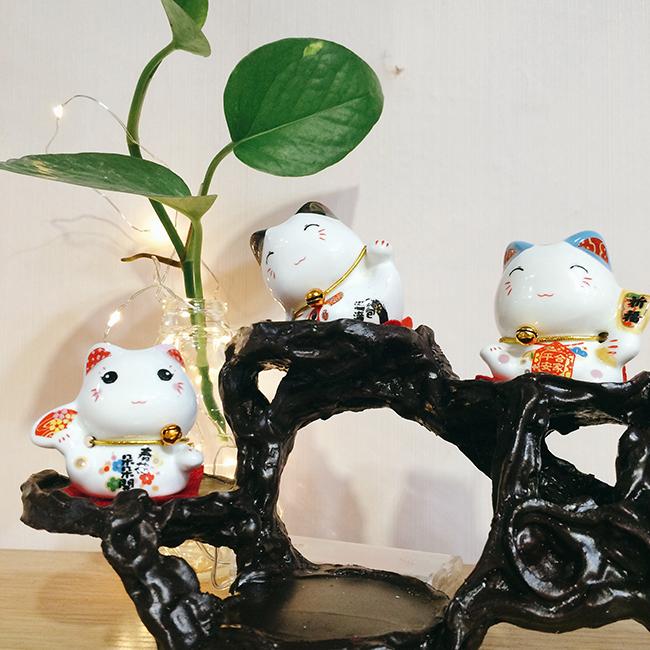 kệ nhựa trưng bày mèo