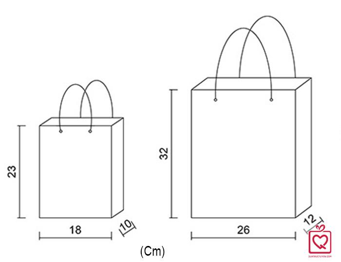 Túi đựng quà kẻ hình chữ nhật đứng bằng giấy