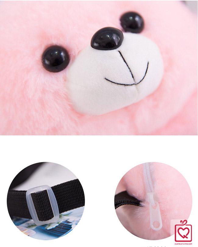 túi đeo gấu Teddy