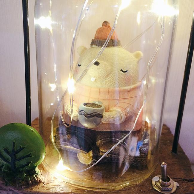Hộp đèn dây tóc phát sáng chú gấu
