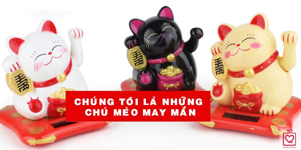 meo-than-tai-vay-tay-nang-luong-mat-troi